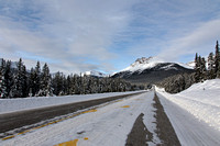 Icefield Pkwy #2